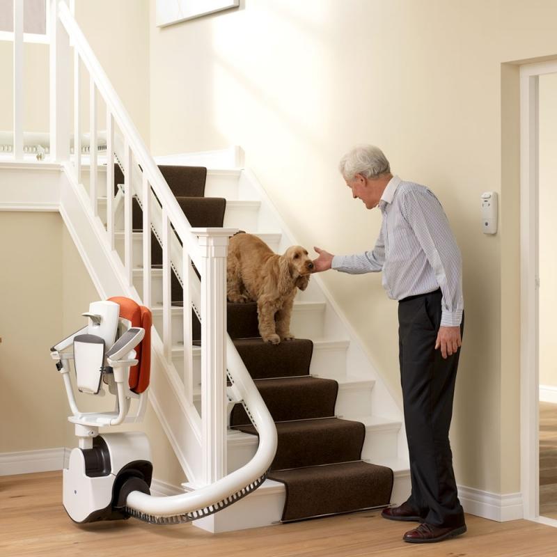 monte escalier dynasty